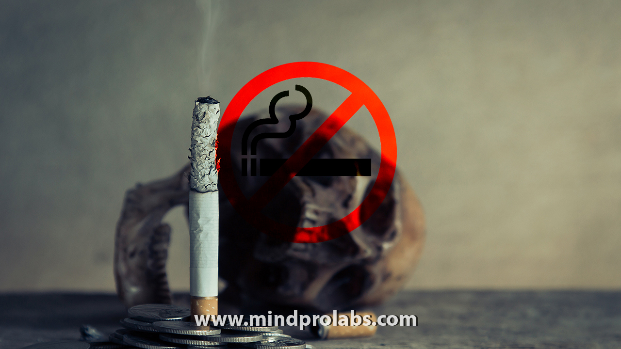 Quit Smoking Now 3.0 is a powerful subliminal program that is loaded with affirmations to help you quit smoking forever effortlessly with the help of NLP (NeuroLinguistic Programming)